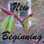 New Beginning meditation