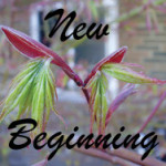 New Beginning meditation