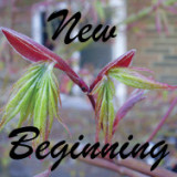 New Beginning short meditation